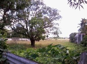 Lot 2519-H Bunsuran Gitna Pandi Bulacan