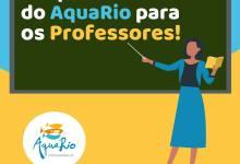 Photo of AquaRio presenteia professores com entrada gratuita