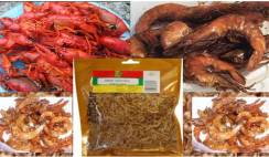 packaged crayfish business