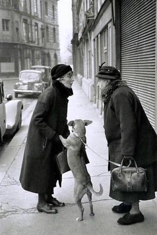 Place Dauphine (París) 1952. Henri Cartier-Bresson