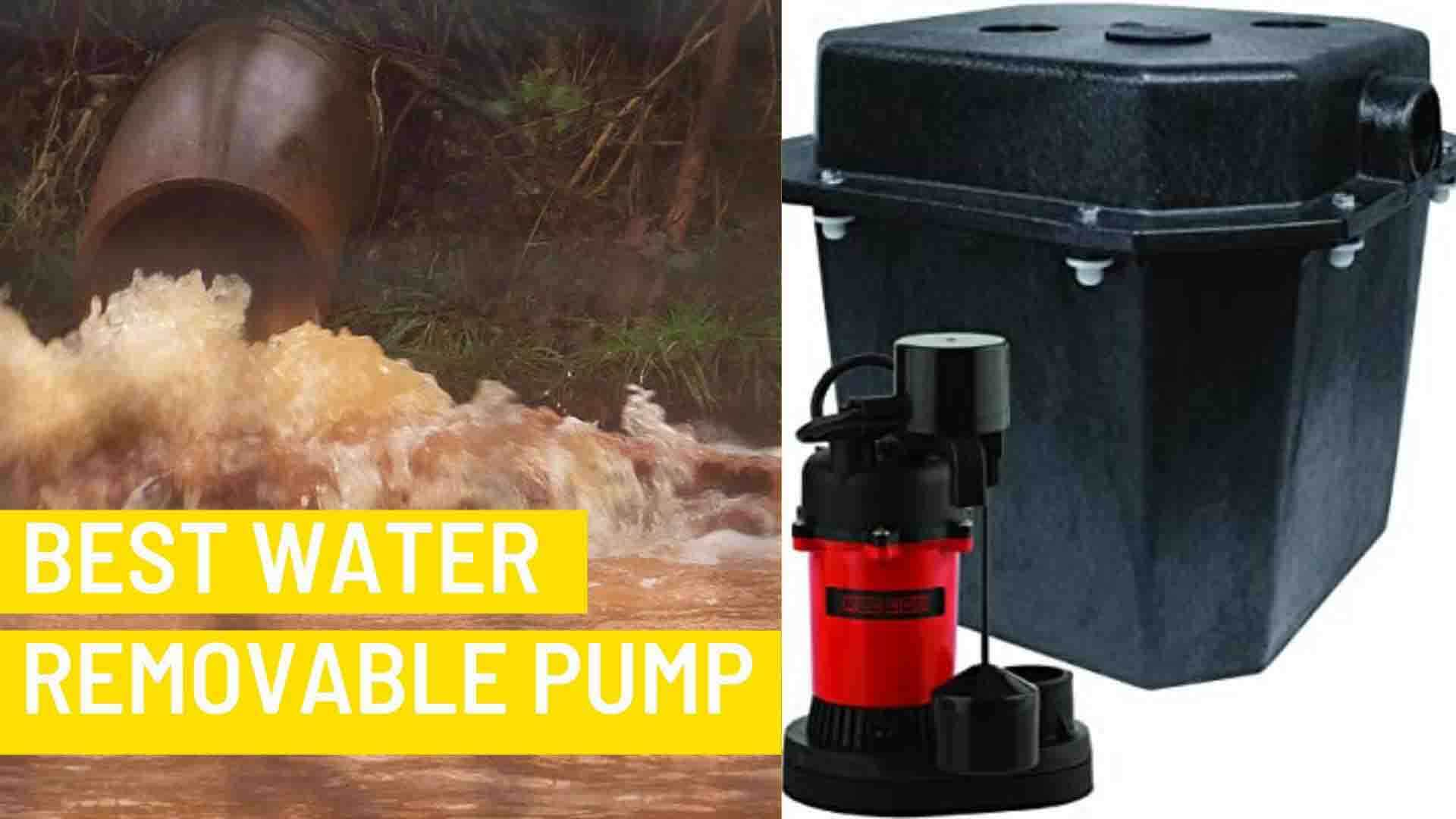 Best Water Removal Pump Red Lion RL-SPS33 1/4 HP