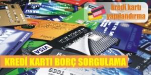 kredi karti borc sorgulama