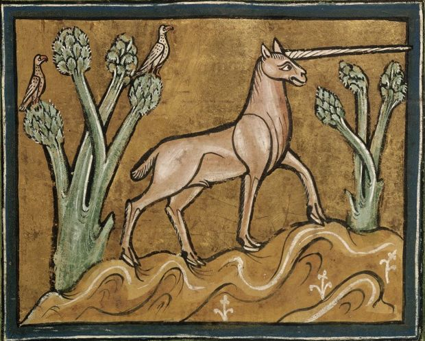 A unicorn with cloven hooves stands on rocky ground, its spiral horn extending to the right. On the left, two birds perch on tree branches.