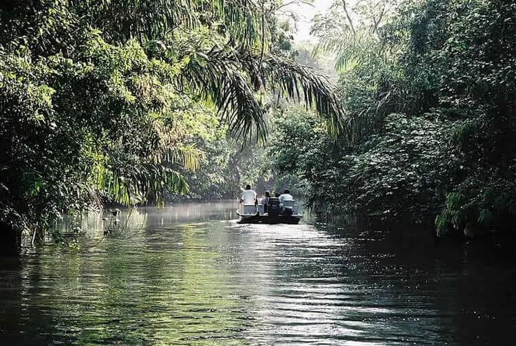 Lugares turisticos de Costa Rica Tortuguero