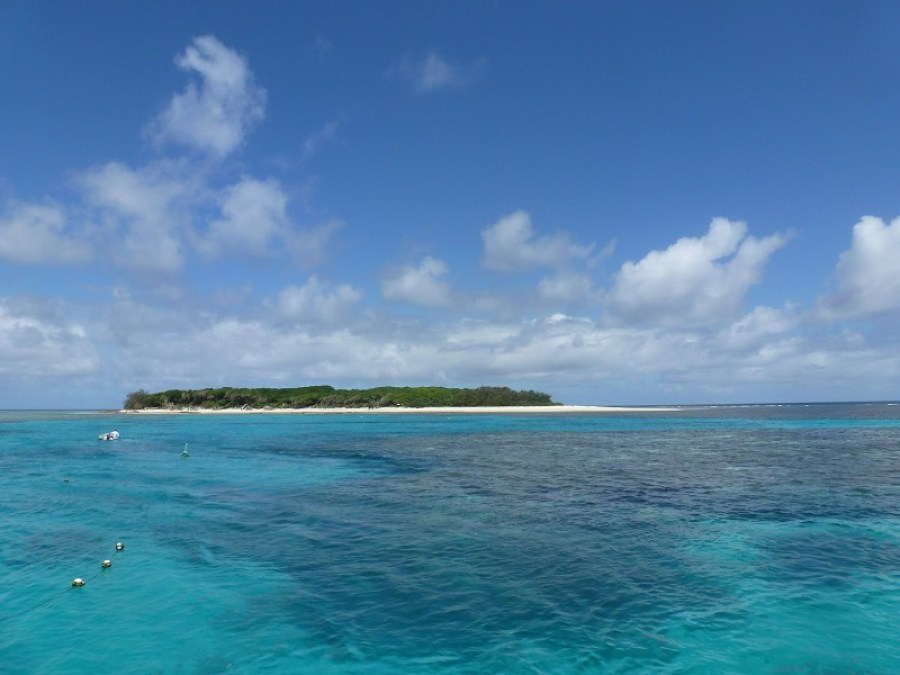 lady-musgrave-island-australie