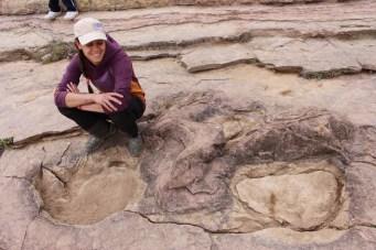 dinosaures-torotoro-bolivie