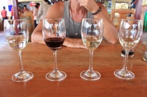 Les fameux vins à déguster!