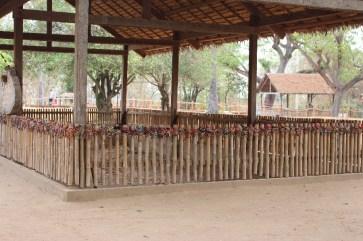 Une des fosses communes aux Killing Fields.