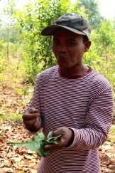 Mister Vieng qui mange des fourmis!