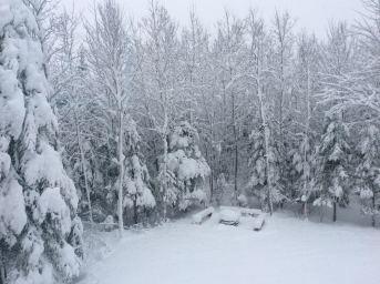 hiver-2016