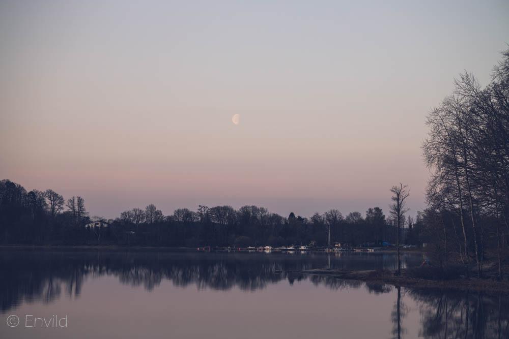 Kl 05 i maj månad vid sjön Mjörn, Lerums Kommun. Måne över Björboholms Småbåtshamn. Foto Johanna Ene 2021.
