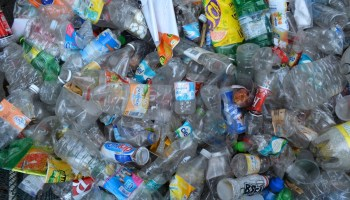 Disposal Method Matters: The Truth Behind Biodegradable Plastics