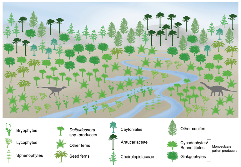 reconstruction of natural environment