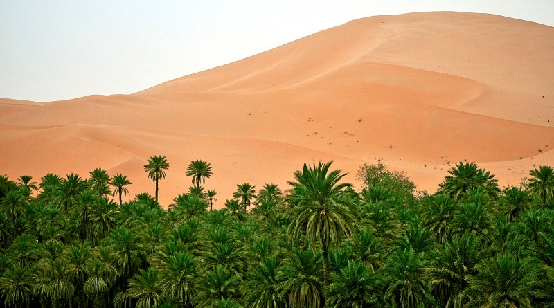 Turning the Sahara Green: Some Unintended Consequences of Wind and Solar Farms