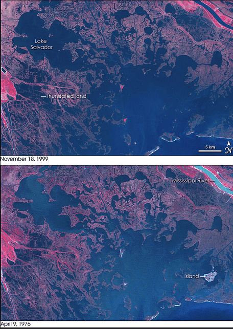 An image of coastal wetlands from 1976 and 1999 demonstrating significant coastal wetland loss.