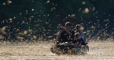 People in a boat on a lake surrounded by thousands of small flies