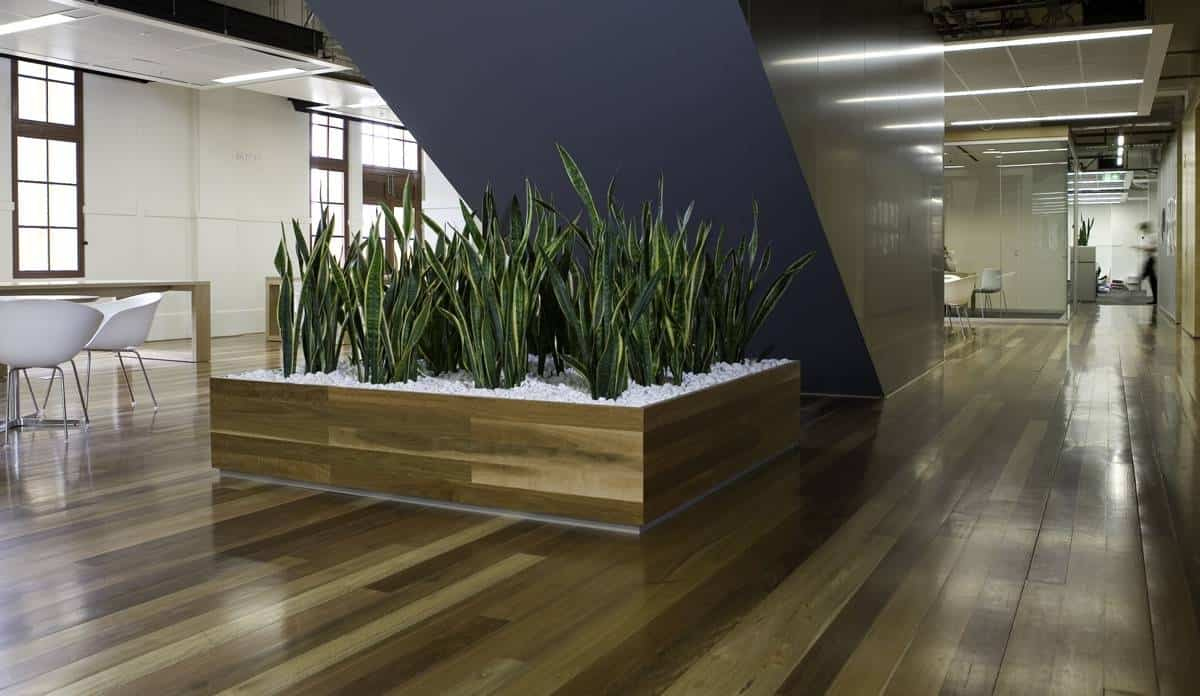 Green Interior Plant Wall Installation Burlington MA