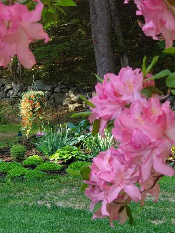 garden massachusetts