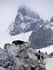 Spigot Point, Antarctica