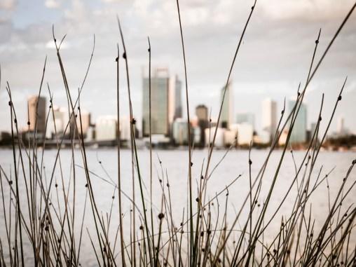 Swan River, Perth City