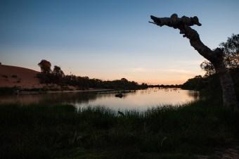 Derwent Creek, Mungerannie, Birdsville Track, South Australia