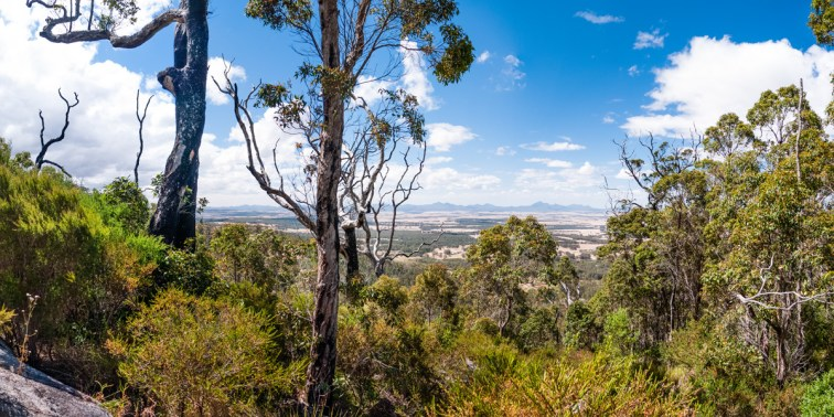 View of the Stirling Ranges from Castle Rock, Porongurup National Park