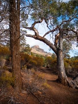 Mary Peak Walk, Flinders Ranges, South Australia
