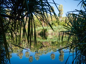 Indarri Falla, Lawn Hill National Park, Queensland