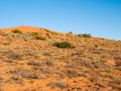 Simpson Desert National Park, Queensland