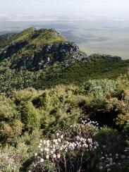 Surrounding Landscape of Mount Toolbrunup, Stirling Range National Park