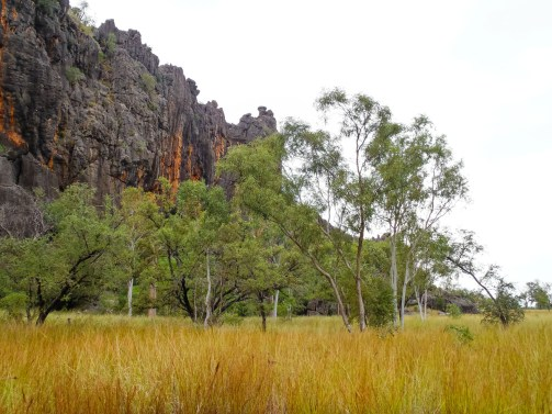 Windjana Gorge National Park, Western Australia