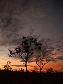 Sunset from Mount Baldy, Home Valley Station, Kimberleys, Western Australia