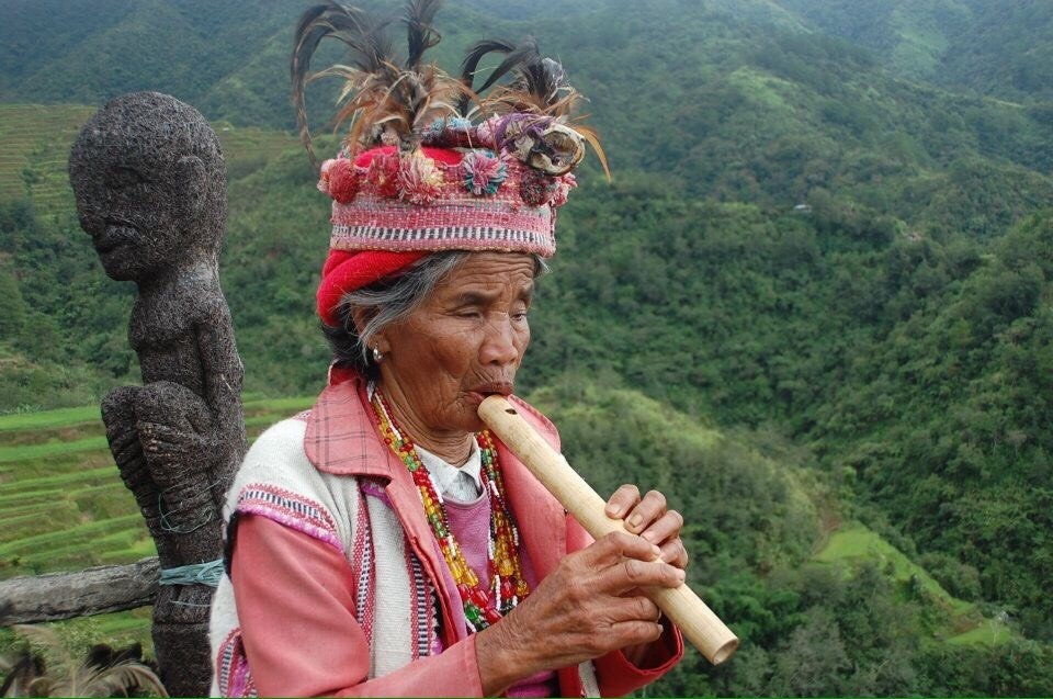 Today, the number of indigenous peoples in the philippines is unknown, but it is estimated to be between 10 and 20 per cent of the country's. Indigenous peoples suffer from the most adverse impacts of ...