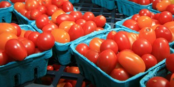 Food System Design for Resilient Population Health