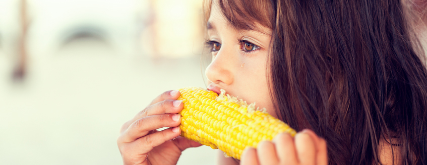 A little girl bites into an ear of corn