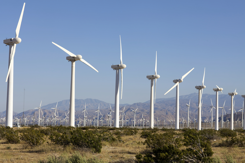Wind Farms Responsible for Death of Birds From Miles Away