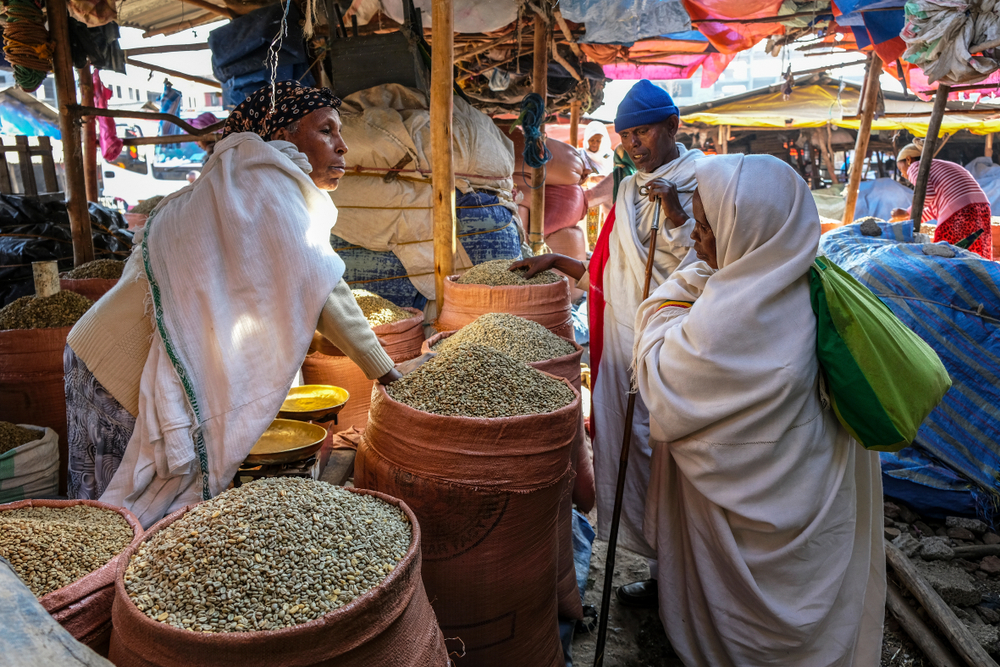 Ethiopia's Coffee Growers Adapting to Climate Change