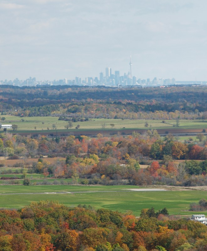 Ontario's Greenbelt is a protected area of farmland, forests, wetlands, and watersheds.