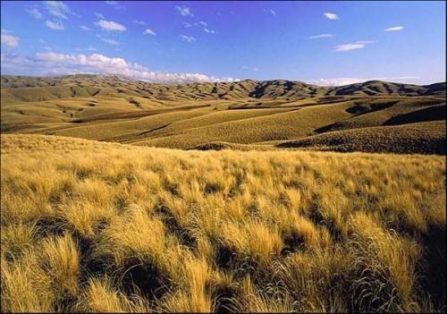 Lammerlaw Ranges