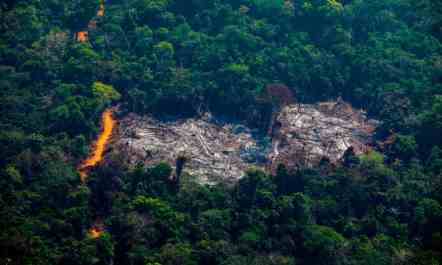 causes-deforestation-negative-effects-of-volcanoes