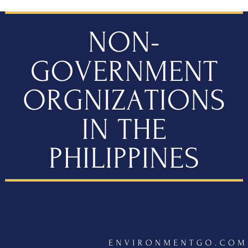 Top 10 Non-Government Organizations in The Philippines