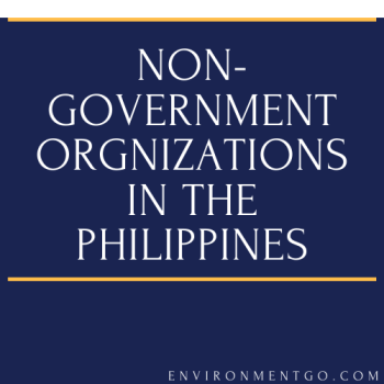 non-government-organizations-in-the-philippines