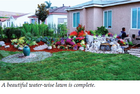 subsurface Drip Irrigation - Landscape Design - Contractor - Los ...