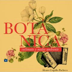 Botánica, vallenato y medio ambiente