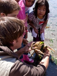 ESC Naturalist explaining crab behavior to students.