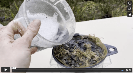 A hand pours soapy liquid from a container into a funnel, which is full of moss, rocks, and pieces of bark.