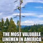 What Is A Lineman What Does An Electrical Lineman Do