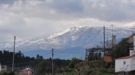 Serra da Estrela - Enxames -4