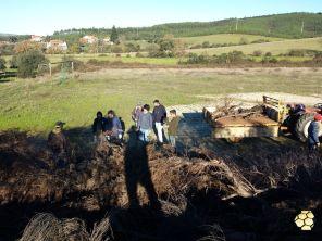 5_Madeiro2014_www.enxames.com