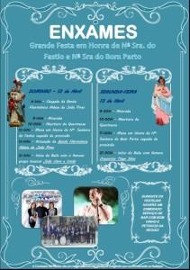 FestaNSF2015-Enxames
